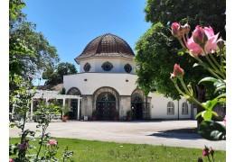Kurbrunnen in Bad Nauheim